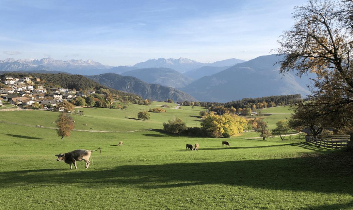 passievooritalia-rondreis-dolomieten